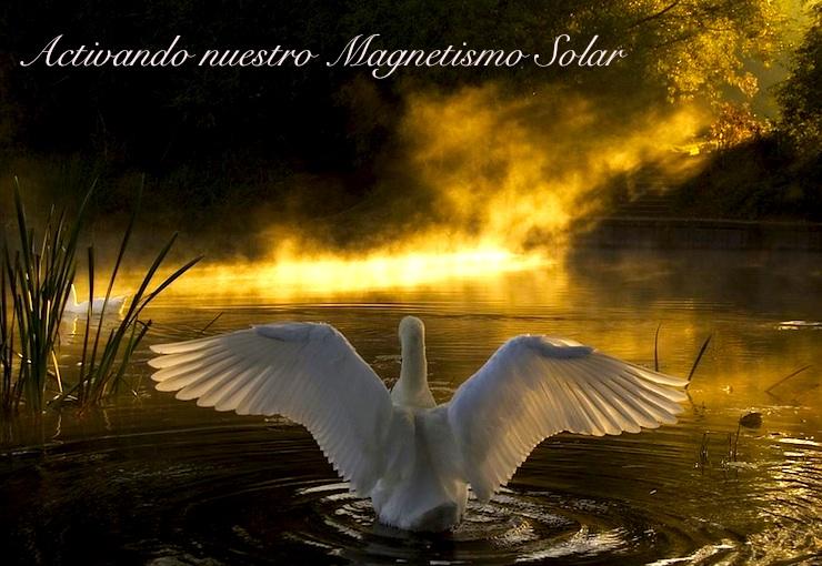 Sol Central - Activando nuestro Magnetismo Solar